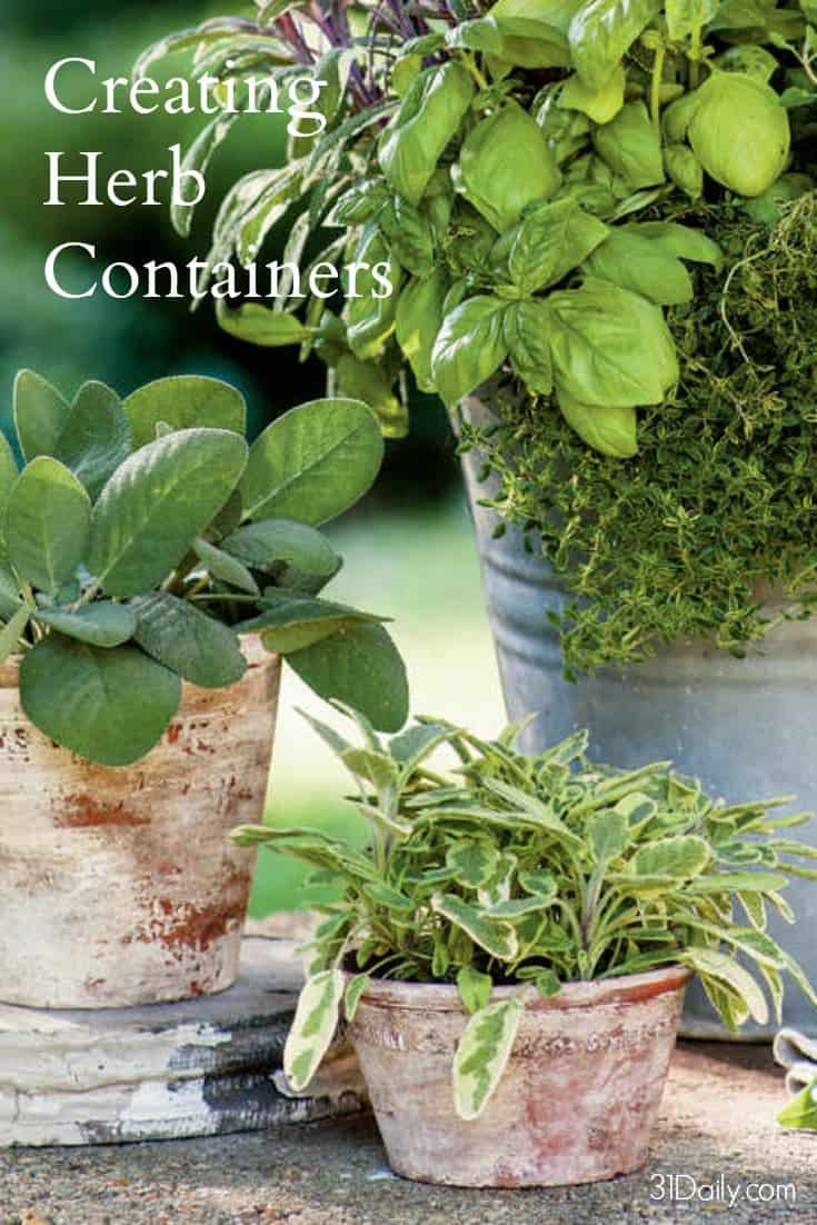 Grow big flavor in small spaces by planting your favorite herbs in a topiary container garden. 31Daily.com