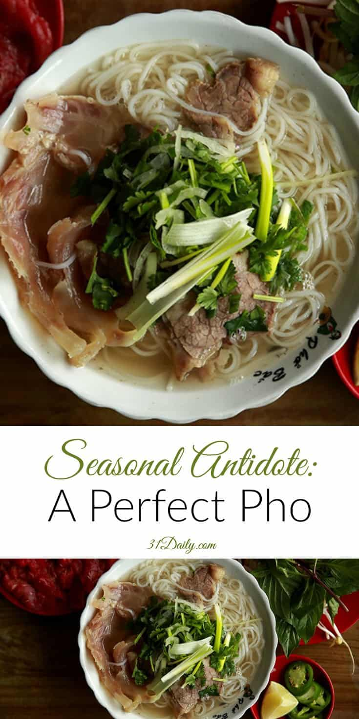 Seasonal Antidote: A Perfect Pho | 31Daily.com