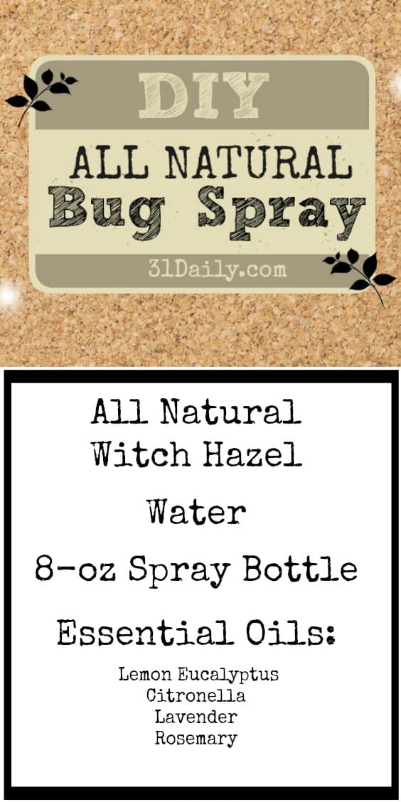 If you're heading outdoor this summer, repel pests and mosquitoes naturally with the power of essential oils. 12 Recipes for insect repellents. 31Daily.com