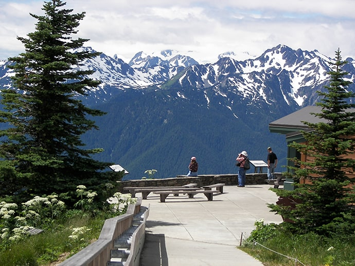 Hurricane Ridge: Olympic Mountains, WA