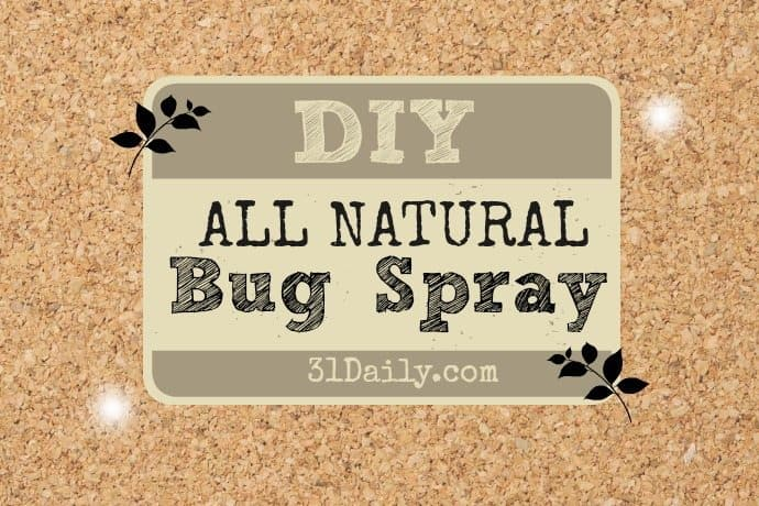 DIY: All Natural Insect Repellent