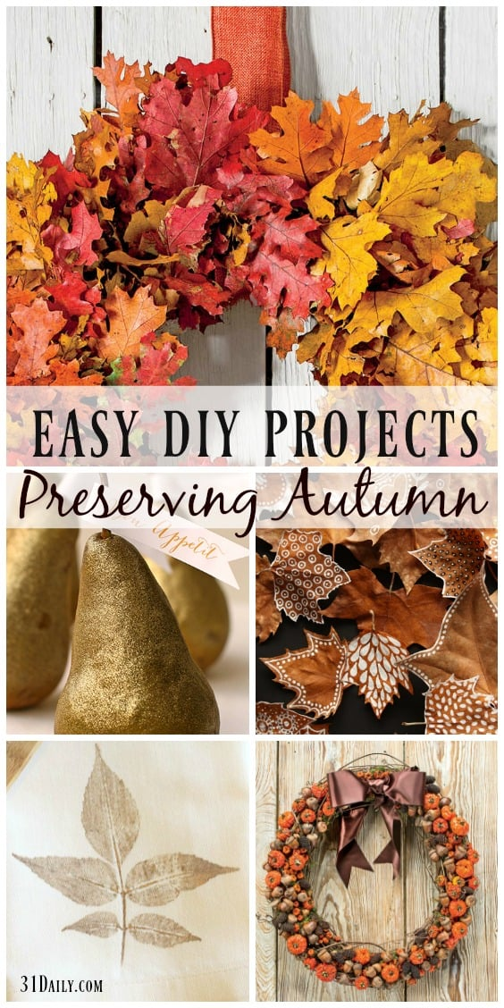 easy-diy-projects-to-preserve-autumns-harvest