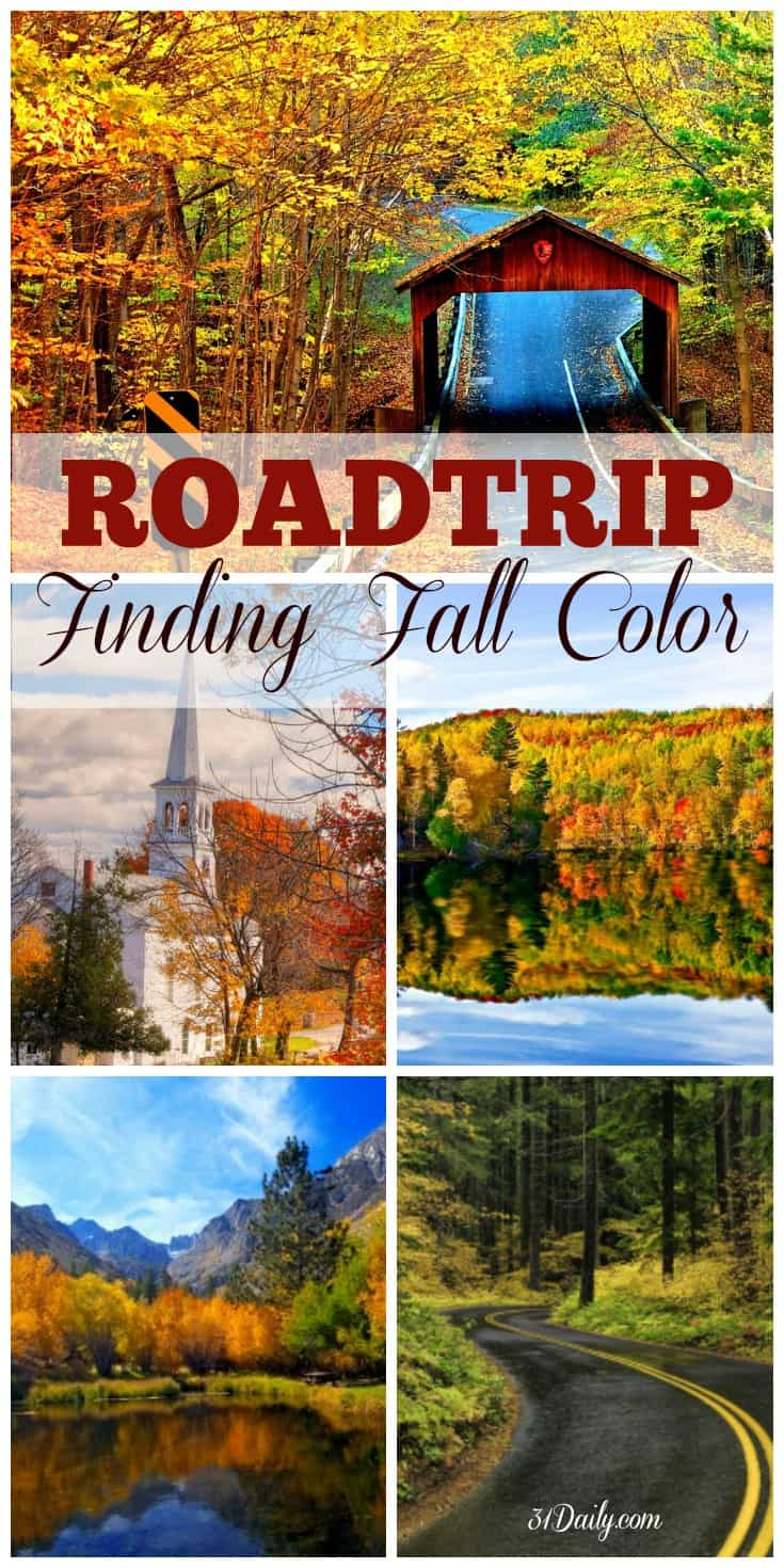 roadtrip-finding-fall-color