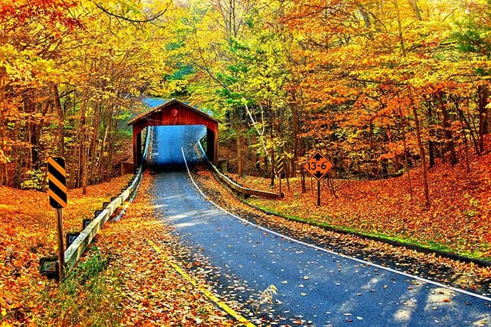 Autumnal Roadtrips: Finding Fall Color