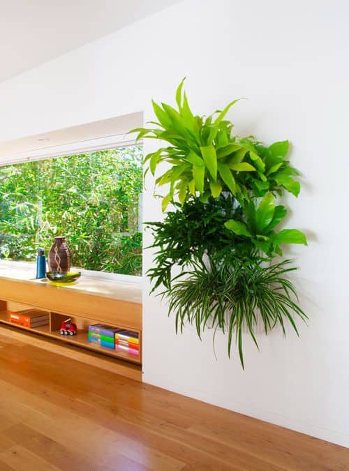 Breathing New Life with Favorite Indoor Plant Gardens | 31Daily.com