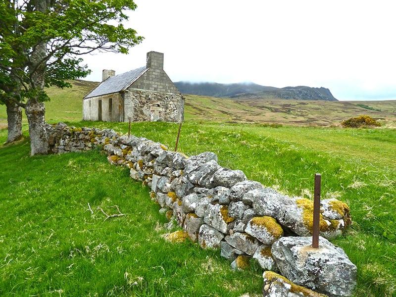 Traditional Irish Colcannon Recipe | 31Daily.com