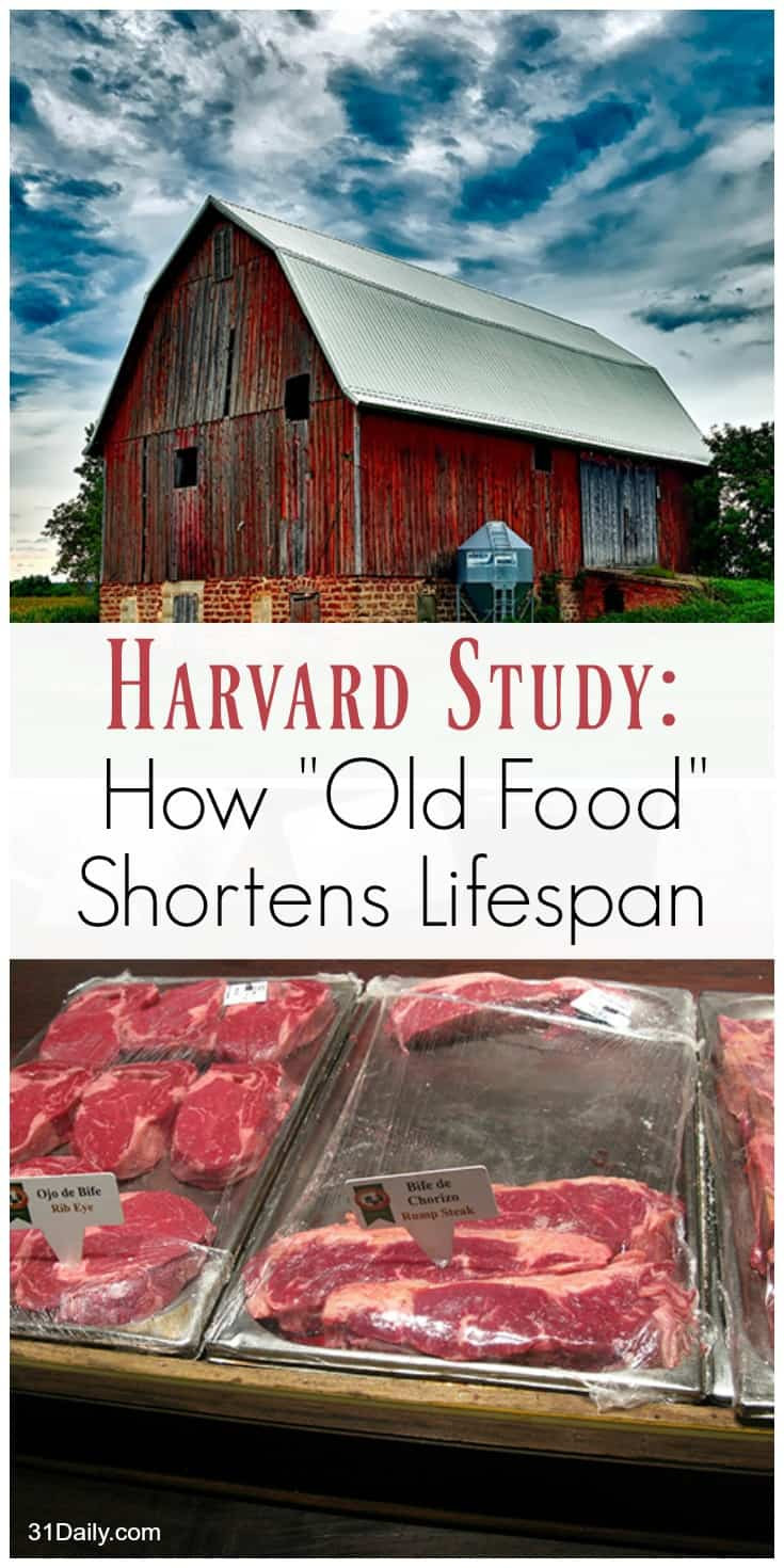 New Harvard Study on How Old Food Shortens Your Lifespan | 31Daily.com