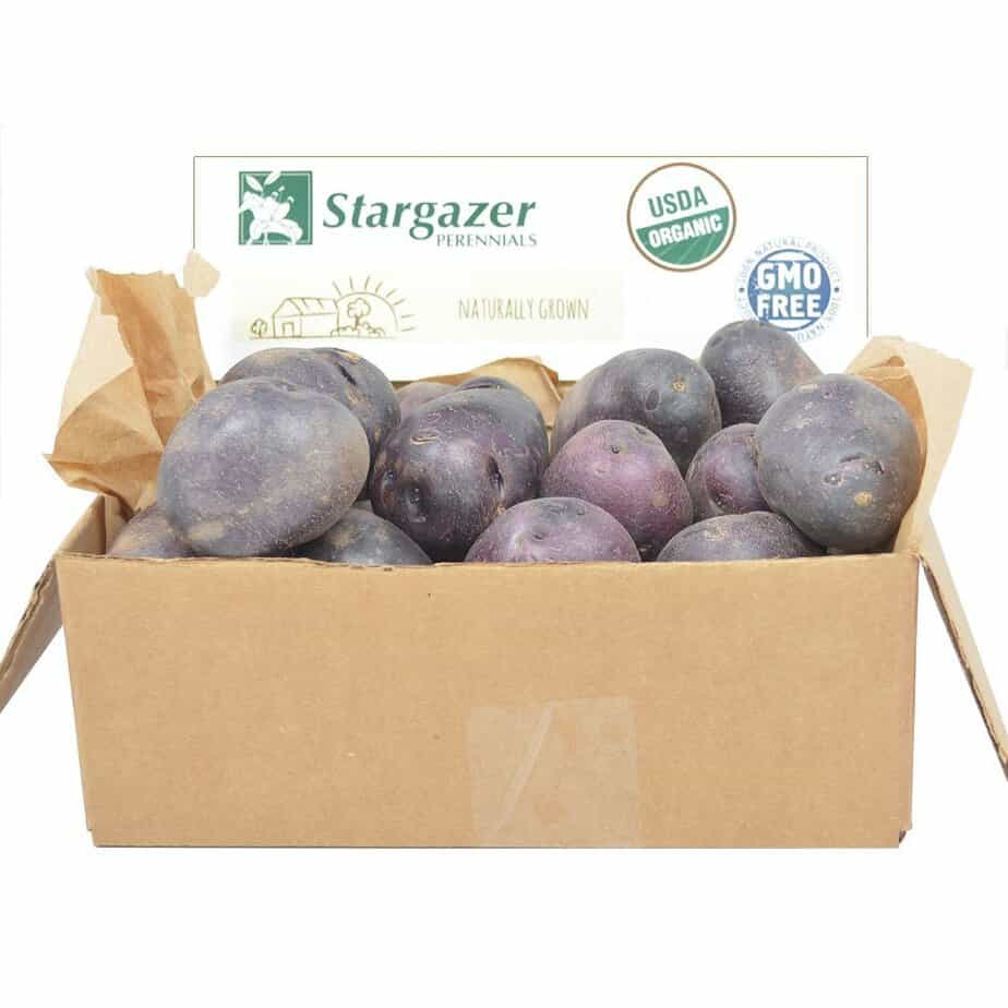 How Purple Potatoes Help Prevent Stroke and Heart Disease | 31Daily.com