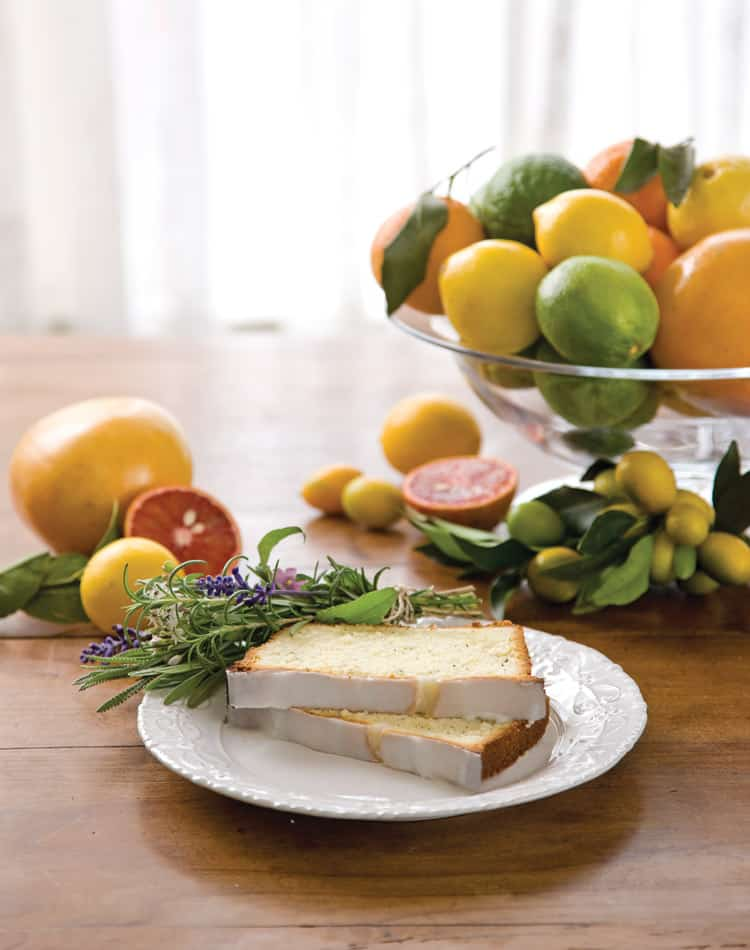 Vibrantly Beautiful Citrus: From Sweet to Savory | 31Daily.com