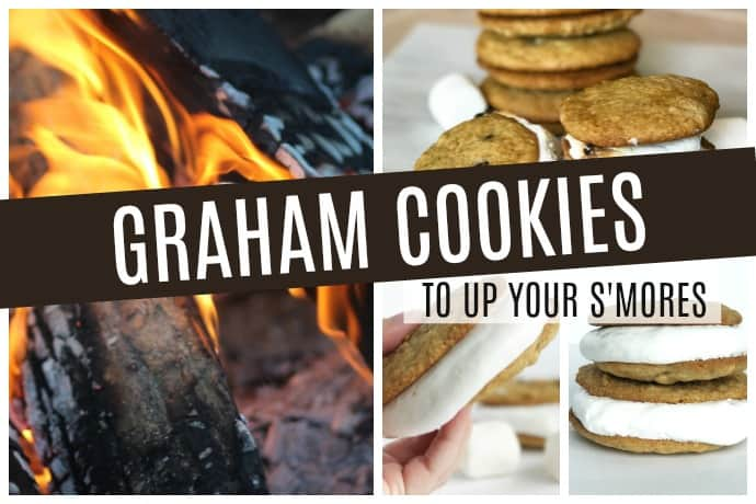 Graham Cookies That Take Your S'mores to the Next Level | 31Daily.com