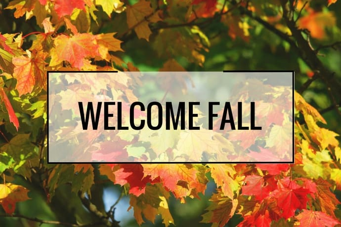28 Ways to Celebrate Fall