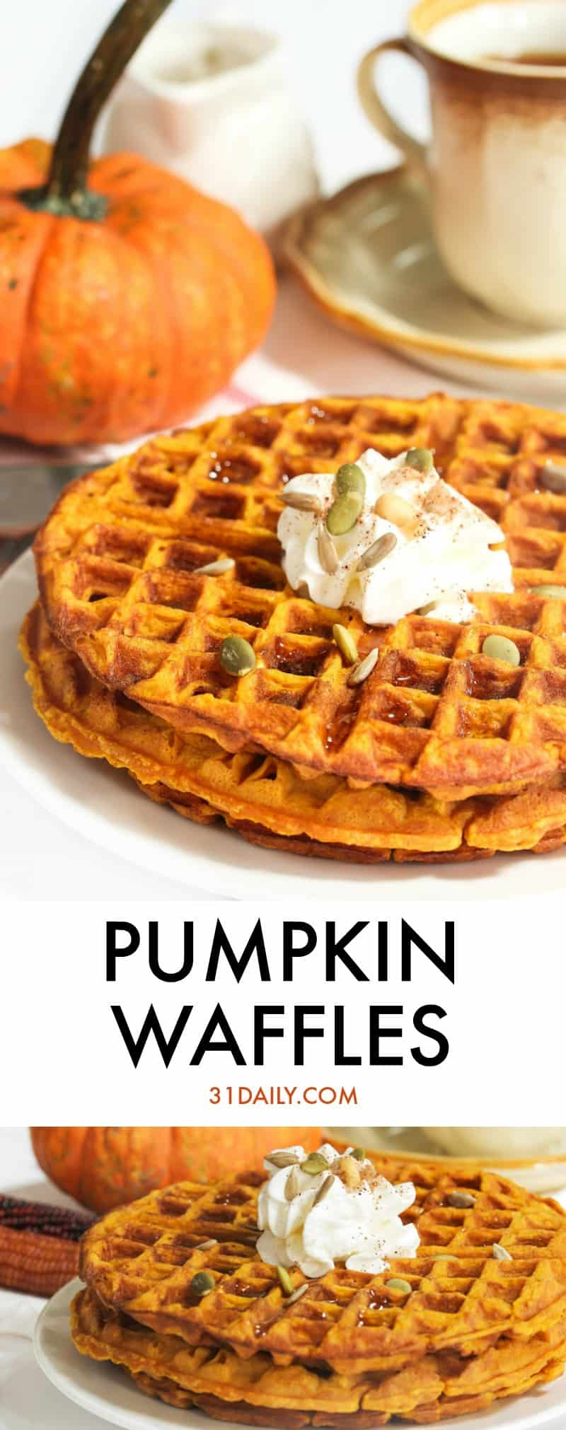 Pumpkin Waffles for Blustery Fall Mornings | 31Daily.com