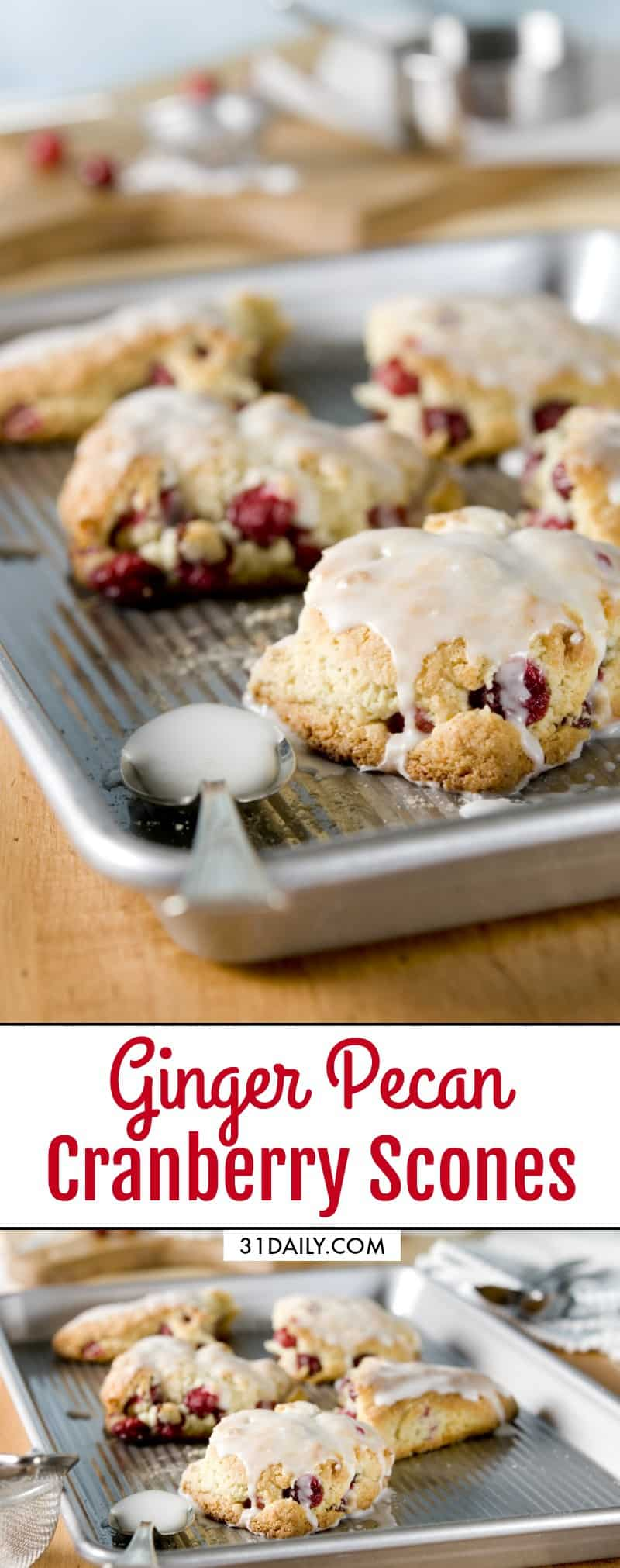 Ginger Pecan Cranberry Scones: Holiday Treats to Share   31Daily.com