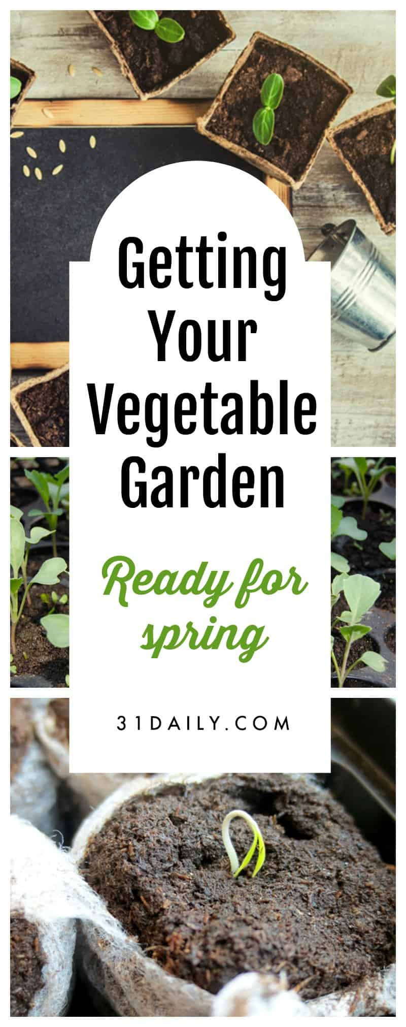 5 Ways to Get Your Vegetable Garden Ready for Spring | 31Daily.com