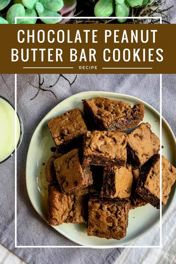 Double Chocolate Peanut Butter Cookie Bars   31Daily.com