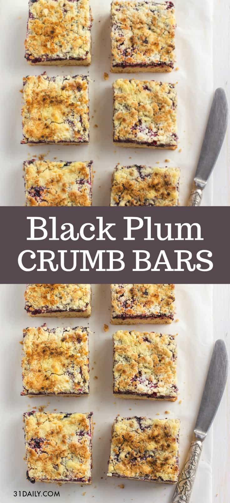 Black Plum Crumb Bars | 31Daily.com
