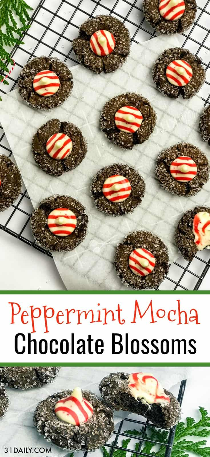 Peppermint Mocha Chocolate Blossom Cookies | 31Daily.com