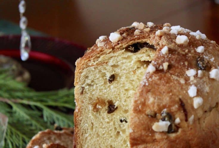 Perfect Italian Panettone Made in a Bread Machine and Baked in the Oven