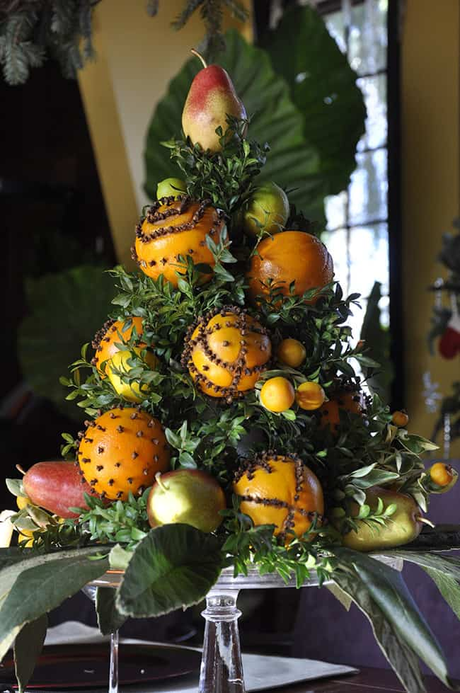 Clove Studded Fruit Topiary