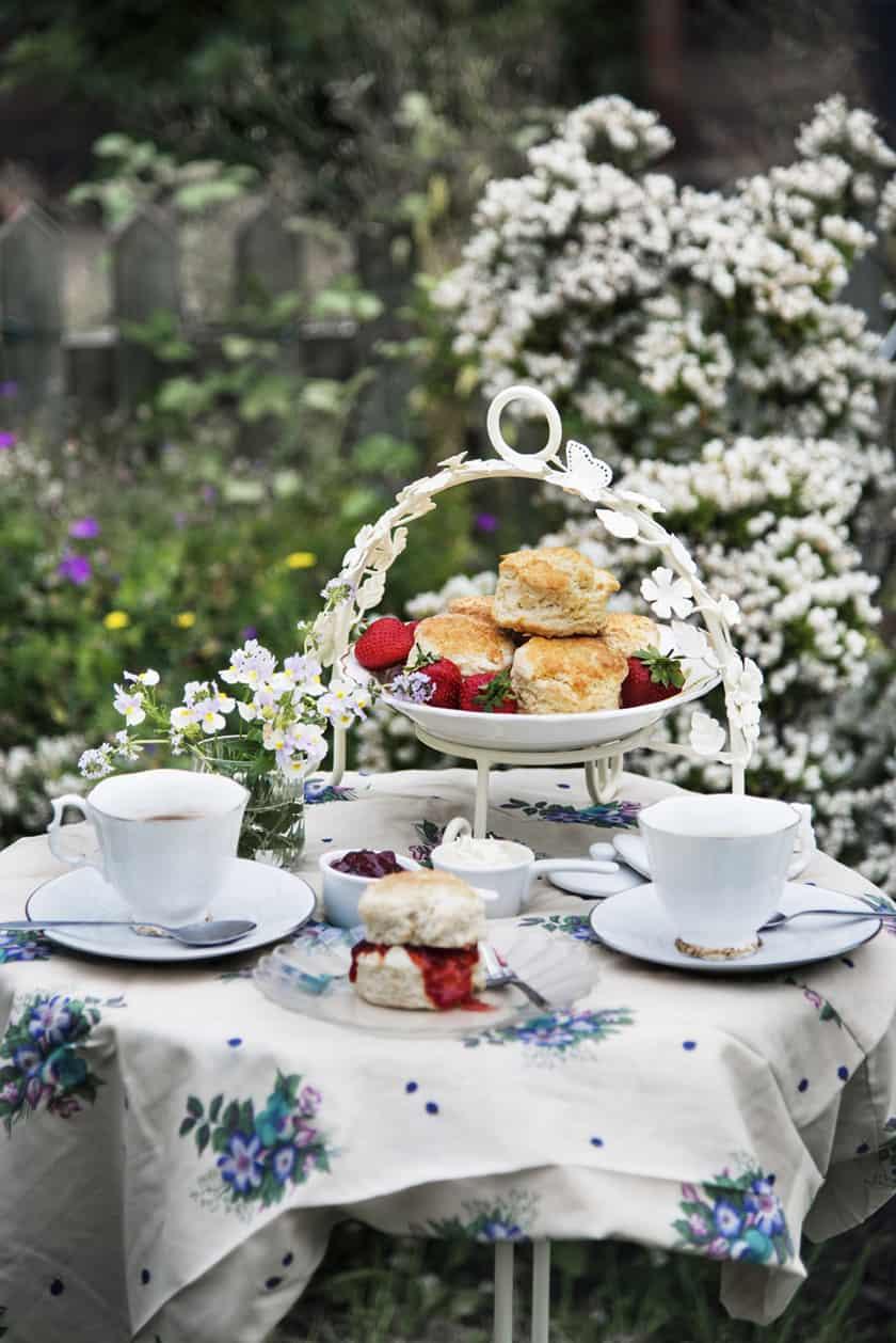 Afternoon Tea Served in a Spring Garden