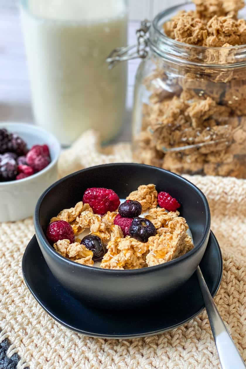 Peanut Butter Granola Clusters Drizzled with Honey and Topped with Berries