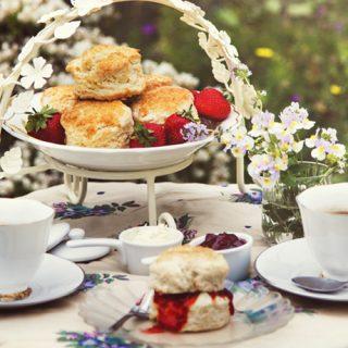 English Scones on an Outdoor Tea Table
