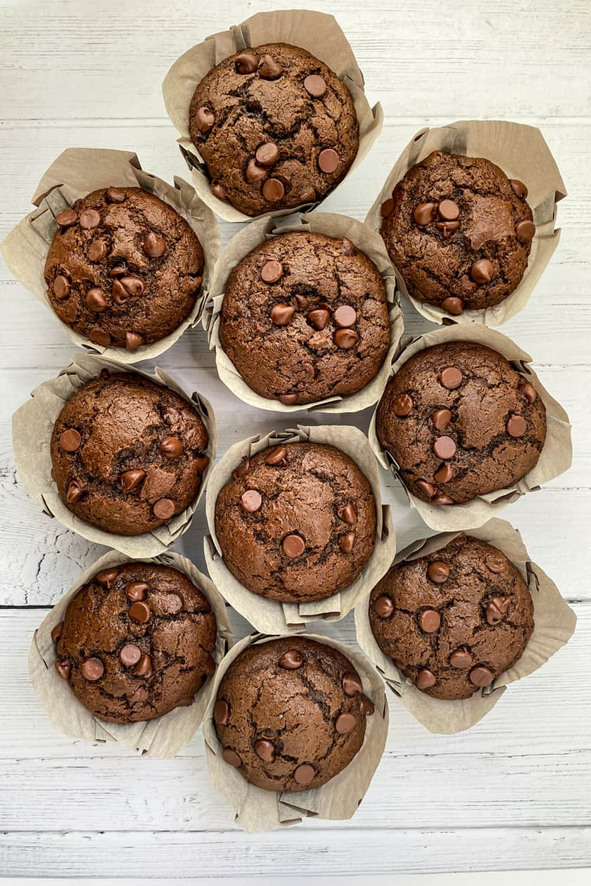 Top view of Double Chocolate Zucchini Muffins on white backdrop