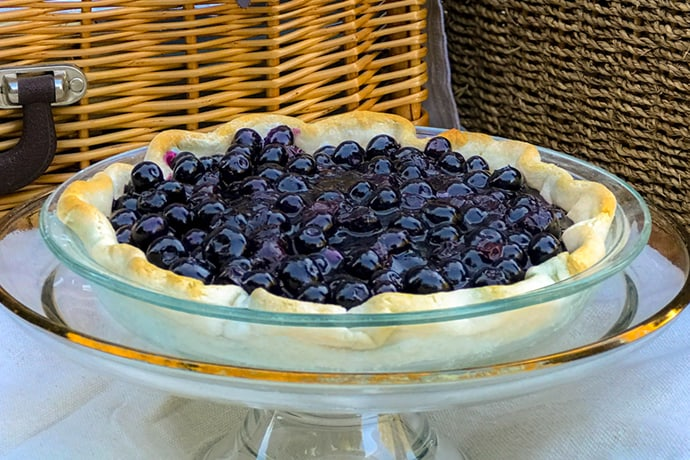 Open Faced Blueberry Pie at a Picnic
