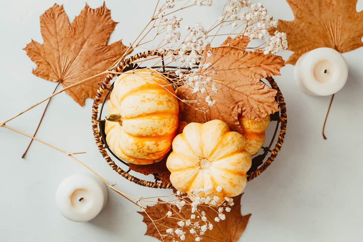 table with mini pumpkins and fall leaves