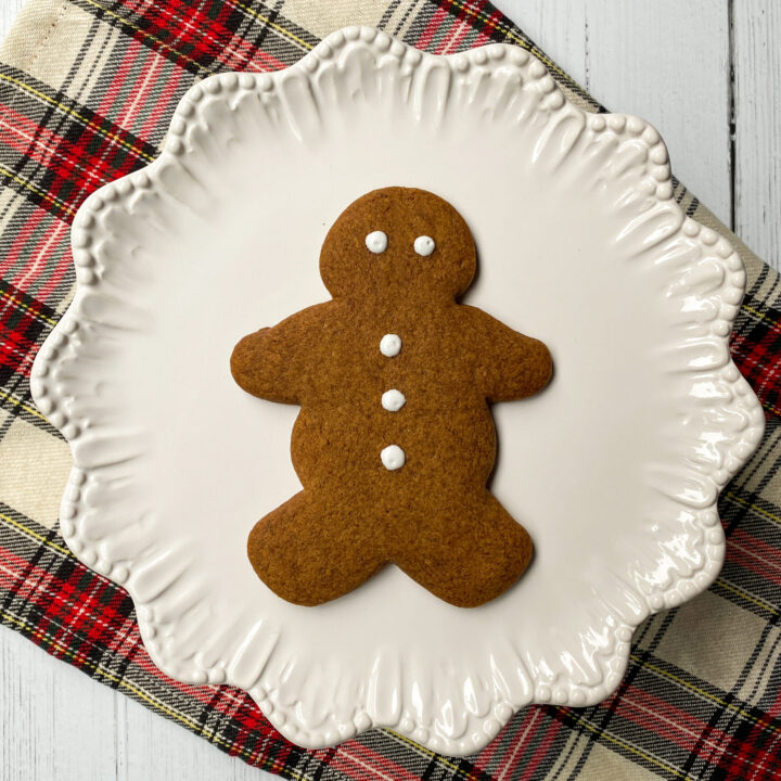 Single Gingerbread Cookie on White Platter